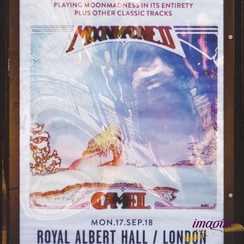 Live At The Royal Albert Hall Camel