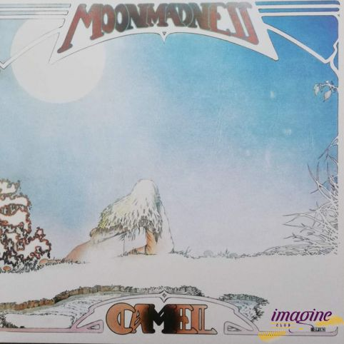 Moonmadness Camel