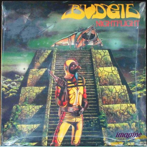 Nightflight Budgie