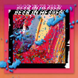 I Love You It`s Cool Bear In Heaven