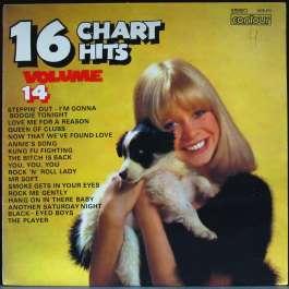 16 Charts Hits Volume 14 Various Artists