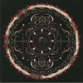 Amarryllis Shinedown