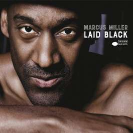 Laid Black Miller Marcus