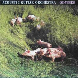 Odyssee Acoustic Guitar Orchestra