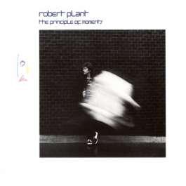 Principle Of Moments Plant Robert