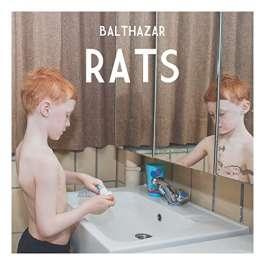 Rats Balthazar