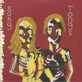 Sung Tongs Animal Collective