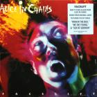 Facelift Alice In Chains